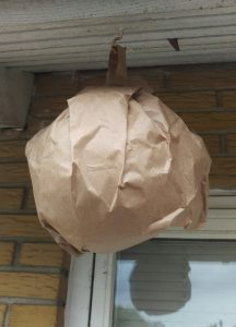 Hjemmelavet hvepseskræmmer af brun papirpose